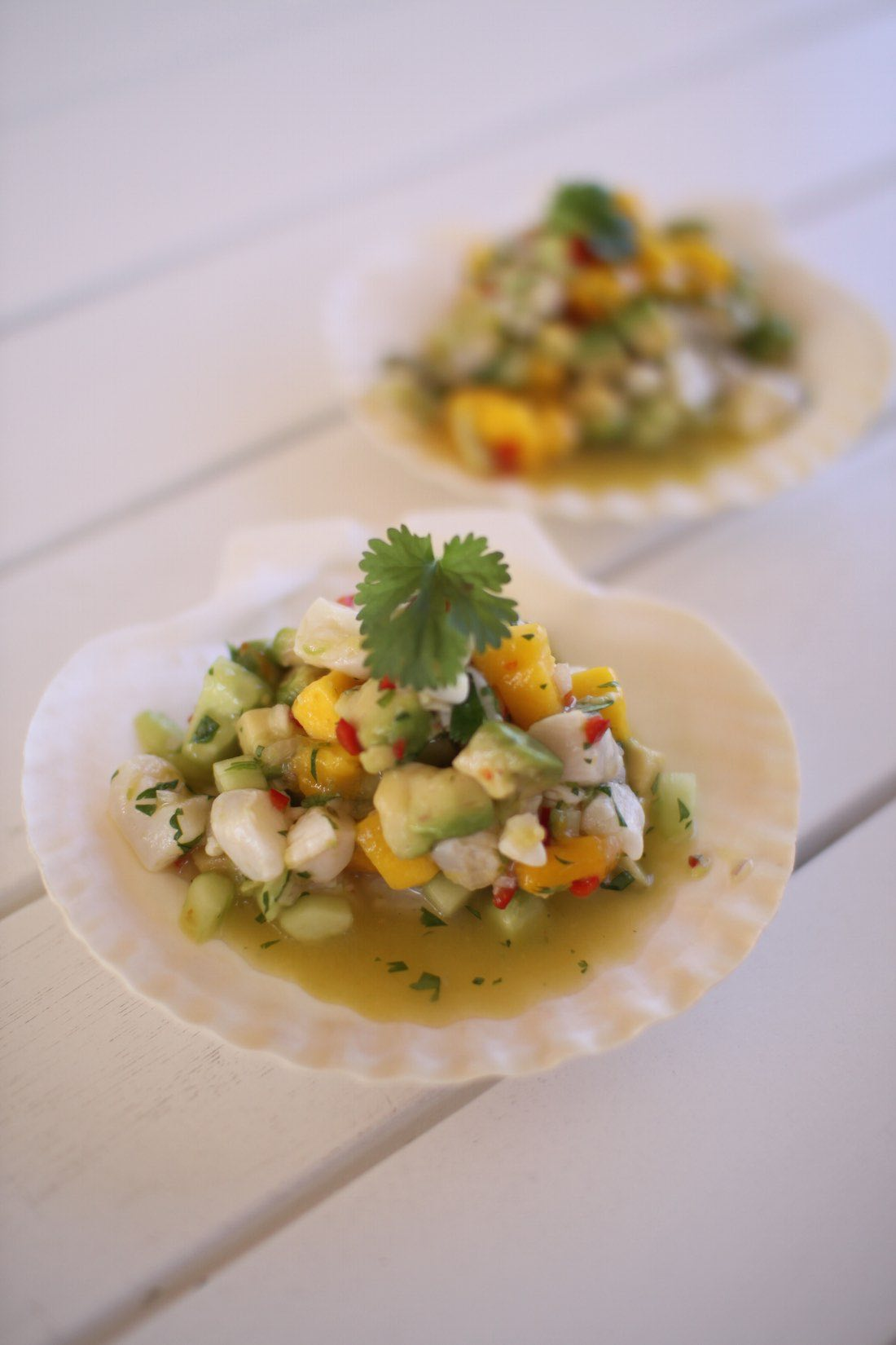 ceviche_low
